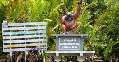 352 Tempat Wisata di Kalimantan Tengah Yang Paling Menarik dan Wajib Dikunjungi