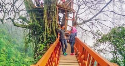 Curug Ciherang, Pesona Panorama Air Terjun Dan Rumah Pohon yang Memikat