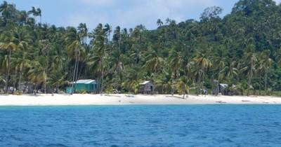Pulau Pahat, Lahan Konservasi Penyu Sisik Yang Berada Diambang Kepunahan