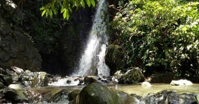 Air Terjun Alue Putek, Air Terjun Mungil di Hutan Belantara Pidie