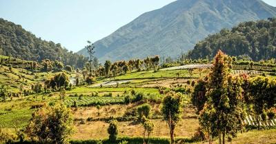 Taman Nasional Kerinci Seblat, Taman Nasional Terbesar di Pulau Sumatera