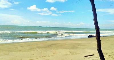 Pantai Indah Naga Permai, Eksotisme Pantai Berpasir Coklat dan Pepohonan Cemara