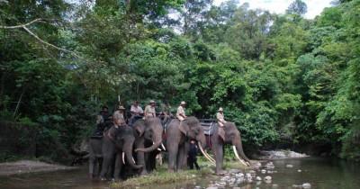 Cagar Alam Jantho, Paru-Paru Dunia di Aceh Besar