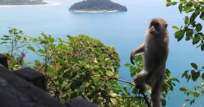 Puncak Geurutee, Fenomena Keindahan Samudra Dari Puncak Gunung