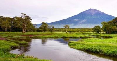 Rawa Bento, Sebuah Rawa dengan Keanekaragaman Burung di Kaki Gunung Kerinci