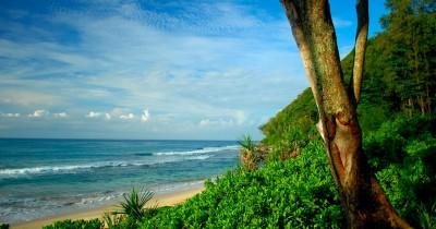 Pantai Momong, Salah Satu Hidden Paradise di Pulau Anambas Kepulauan Riau