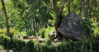 Situs Seputih, Sebuah Situs Bersejarah di Jember
