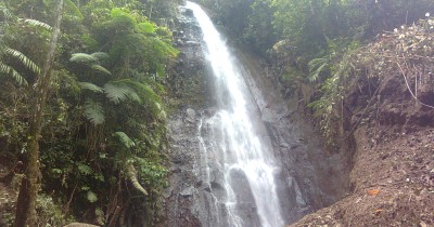 Air Terjun Parijotho, Surga yang Tersembunyi di Tengah Hutan Pamongan