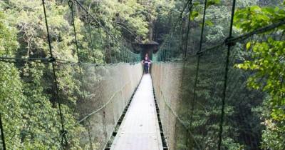 Pusat Pendidikan Konservasi Alam Bodogol, Tempat Edukasi dengan Tema Hutan Hujan Tropis