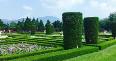 Taman Wisata Bunga Nusantara, Destinasi Keindahan Taman Warna Warni Dengan Beribu Bunga