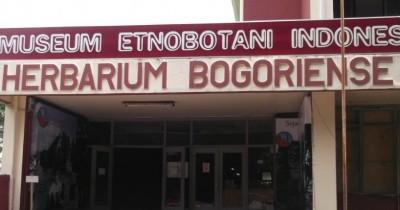 Museum Etnobotani, Berlibur Yang Asyik Sambil Menambah Wawasan