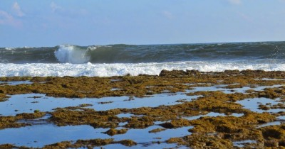 Pantai Minajaya, Menikmati Pesona Pantai Hijau Dibalik Sukabumi