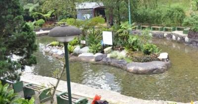 Sari Ater Hot Spring Resort, Segarkan Tubuh  dengan Berendam Air Panas