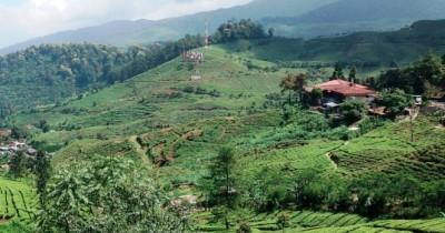 Agro Gunung Mas, Berlibur dengan Kesejukan