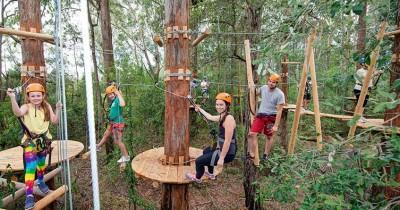 Treetop Adventure Park, Tempat Wisata Menarik yang Mampu Mengacu Adrenalin
