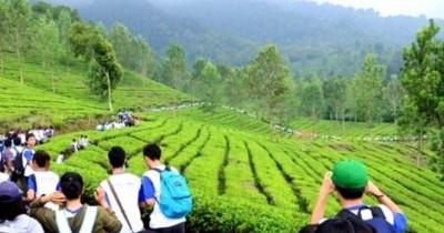 Taman Riung Gunung, Wisata Murah Menyenangkan
