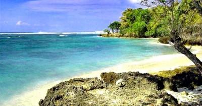 Wisata Pantai Plengkung, Berburu Ombak untuk Teman Berselancar