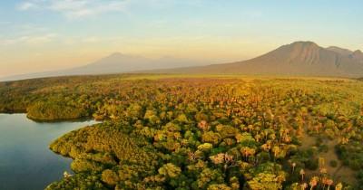 Wisata Taman Nasional Baluran, Sensasi Afrika di Jawa Timur