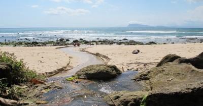 Pantai Pancur, Salah Satu Pesona Tersembunyi di Alas Purwo