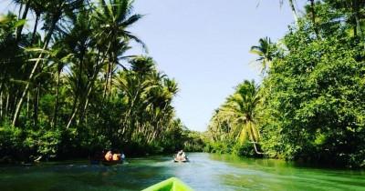 Sungai Maron, Wisata di Jawa Timur dengan Sensasi ala Hutan Amazon