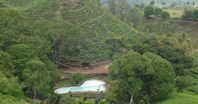 Kebun Teh Jamus, Berwisata Sambil Mengenal Produksi Teh