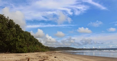 Pantai Trianggulasi, Pesona Tersembunyi di Alas Purwo