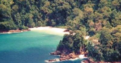 Wisata Pantai Teluk Hijau, Permata yang Tersembunyi di Banyuwangi