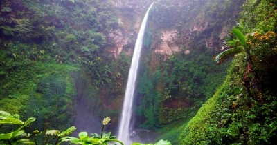 Air Terjun Coban Pelangi, Berwisata Sambil Menikmati Pemandangan Kebun