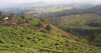 Gunung Liliran, Berwisata Sambil Menikmati Pemandangan Elok Persawahan