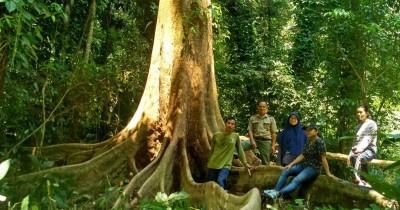 Cagar Alam Sibolangit, Rekreasi Sambil Menjelajahi Hutan Hujan Tropis