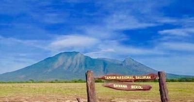 Taman Nasional Baluran : Fasilitas, Rute, Jam Buka, Harga Tiket dan Daya Tarik