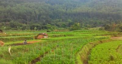 Kampoeng Goenoeng : Fasilitas, Rute, Jam Buka, Harga Tiket dan Daya Tarik