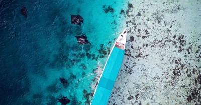 Manta Point Labuan Bajo : Fasilitas, Rute, Jam Buka, Harga Tiket dan Daya Tarik