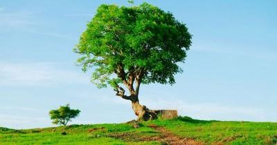 Bukit Cinta : Fasilitas, Rute, Jam Buka, Harga Tiket dan Daya Tarik