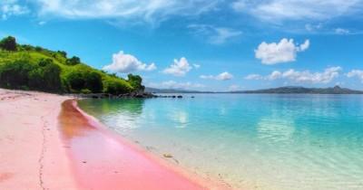 Pantai Pink : Fasilitas, Rute, Jam Buka, Harga Tiket dan Daya Tarik