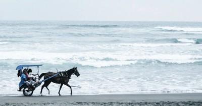 Pantai Parangkusumo : Tiket Harga Masuk, Foto dan Lokasi