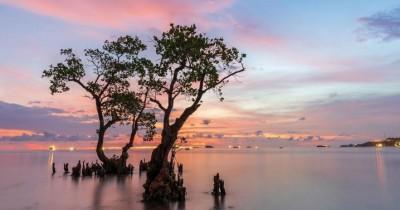 Pantai Nirwana : Tiket Harga Masuk, Foto dan Lokasi