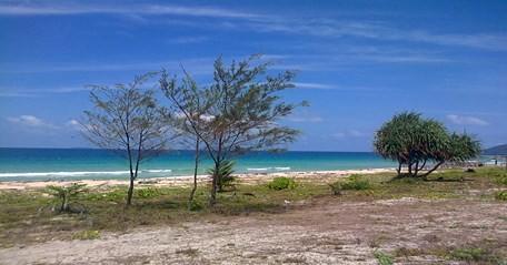 Pesona Pantai Sisi Pantai Pasir Putih Terpanjang Di Kepulauan Riau Tempat Me