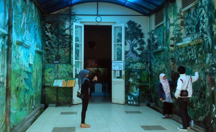 Wisata Ke Museum Zoology