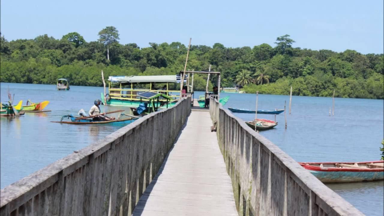 Pantai Bedul Indahnya Wisata Mangrove Di Banyuwangi Tempat Me