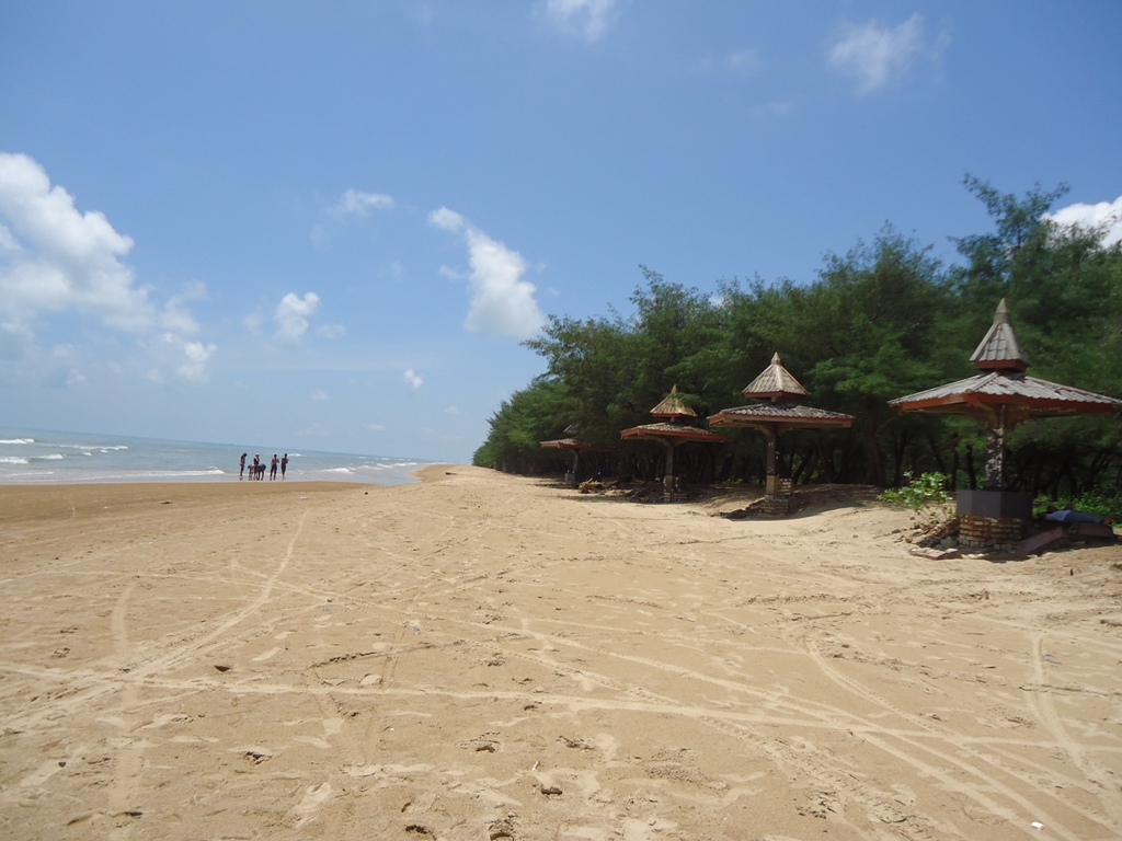 Pantai Lombang Berwisata Di Bawah Asrinya Cemara Udang Tempat Me